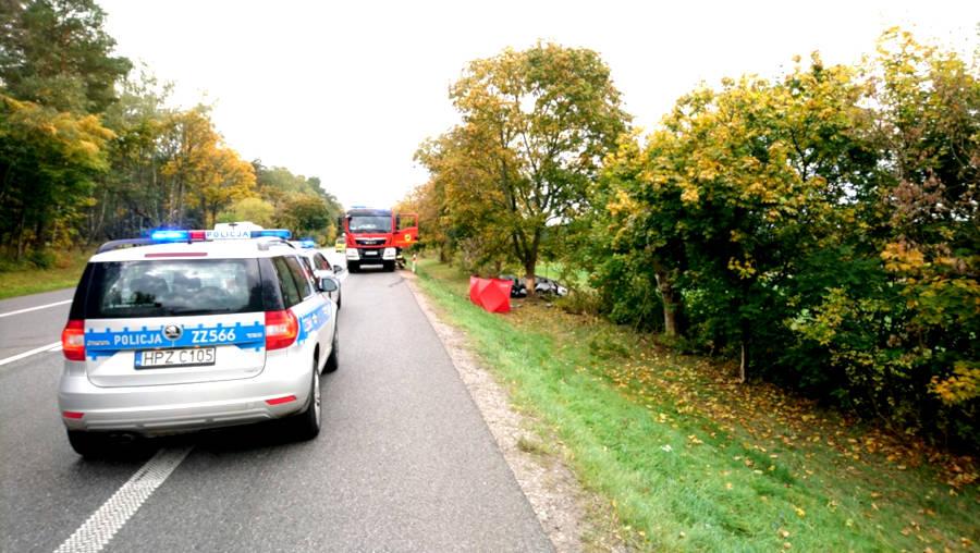 Śmiertelny wypadek na krajowej dwójce w Marysinie! (Źródło: KPP w Mińsku Mazowieckim)